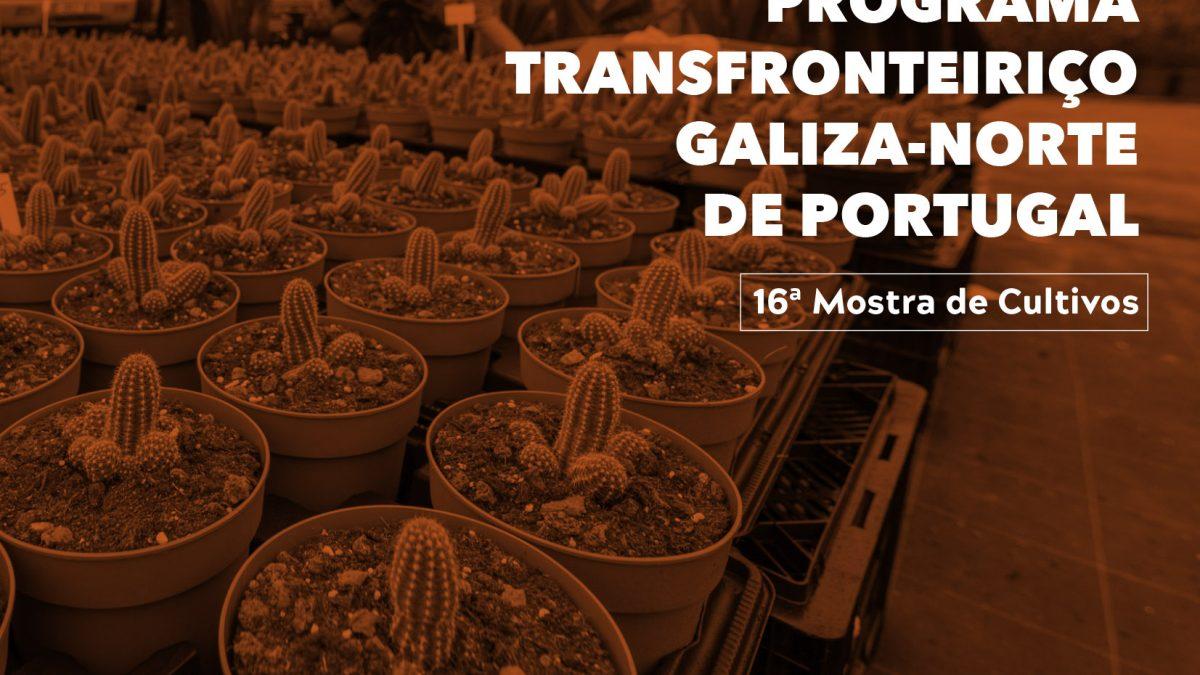 Programa Transfronteiriço Galiza-Norte de Portugal