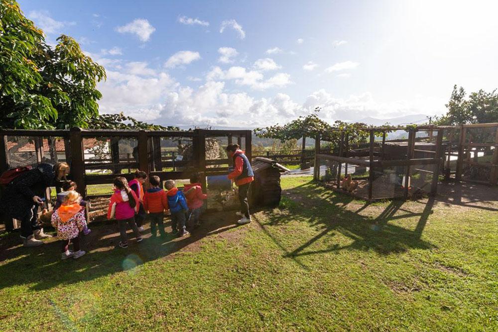 Catrocentos escolares de educación infantil de Tomiño e Cerveira visitan unha granxa-escola